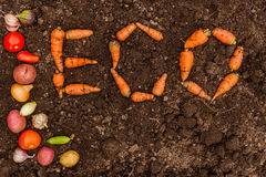 Free Inscription ECO On The Background Of Fresh Earth And A Group Of Young Vegetables Stock Images - 60493874