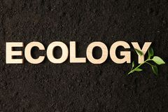 Inscription ecology and green sprout on black soil background, space for text. Environmental protection stock images