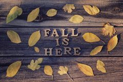 Free Inscription. Fall Is Here In Wooden Letters. Frame Of Yellow Lea Stock Photo - 120622050