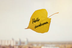 The inscription Hello autumn yellow leaf closeup. Stock Image