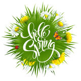 Inscription Hello Spring Hand Lettering on background with flowers. Vector illustration. EPS10 Royalty Free Illustration
