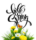 Inscription Hello Spring Hand Lettering on background with flowers. Vector illustration. EPS10 Vector Illustration