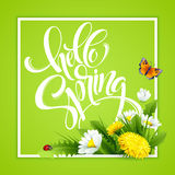 Inscription Hello Spring Hand Lettering on background with flowers. Vector illustration. EPS10 Stock Illustration
