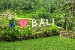 Inscription I Love Bali on the background of green rice terraces. Nature. Royalty Free Stock Photos