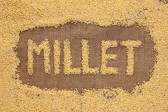 Inscription millet with a millet  on burlap Royalty Free Stock Image