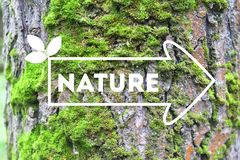 Inscription Nature on the arrow tree bark background The concept of ecology Natural banner royalty free stock photo