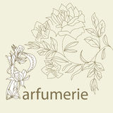 Inscription Parfumerie Stock Photos