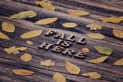 inscription A queda está aqui em letras de madeira Quadro do pasto amarelo foto de stock