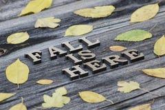 inscription A queda está aqui em letras de madeira Quadro do pasto amarelo imagem de stock