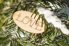 Inscription romantique au sujet de l'amour sur un fond d'hiver Photos libres de droits