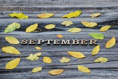 Inscription September on a wooden background, frame of yellow le. Aves Stock Photo