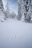 Inscription SNOW on the snow. In the forest royalty free stock image