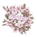 The inscription spring in the colors cherry stock illustration