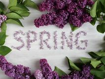 Lilac flowers on a wooden board. Inscription Spring created with lilac flowers  surroundes by flowers and leaves lilac on a wooden board  nature colors royalty free stock photography