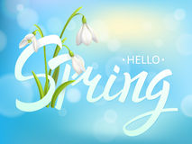 Inscription Spring Time on background with Lettering and snowdrop. Vector Illustration EPS10 Royalty Free Stock Image