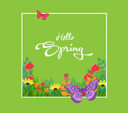 Inscription Spring Time on background with spring flowers and butterflies Royalty Free Stock Image