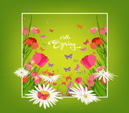 Inscription Spring Time on background with spring flowers and butterflies Royalty Free Stock Photos