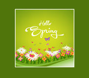Inscription Spring Time on background with spring flowers and butterflies Stock Images