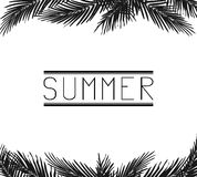 The inscription Summer in the palm leaves royalty free illustration