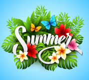 Inscription summer. Vector illustration with Stock Images