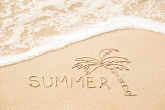 Inscription of the word Summer and palm tree drawing on wet yell Royalty Free Stock Image