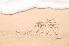 Inscription of the word Summer and palm tree drawing on wet yell Stock Photos
