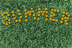 Inscription of yellow flowers on a background of grass Stock Photos