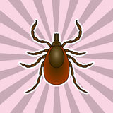 Insect anatomy. Sticker Tick parasite. Sketch of Tick. Mite.  Tick Design for coloring book. hand-drawn Tick. Vector Stock Image