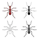 Insect ant single icon in cartoon,black,outline,monochrome style for design.Pest Control Service vector symbol stock. Illustration Royalty Free Stock Images