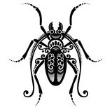 Insect beetle Stock Photo