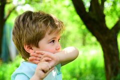 Insect bite, mosquito wound. Remedy for mosquitoes, saliva from bite. Serious look from young boy. Lonely child in park stock photo