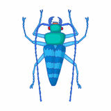 Insect bug icon, cartoon style Royalty Free Stock Photography