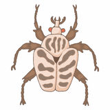 Insect bug icon, cartoon style Stock Image