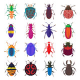 Insect bug icons set, cartoon style. Insect bug icons set in cartoon style  on white background Royalty Free Stock Photography