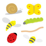 Insect Bug Snail Ladybird Butterfly Caterpillar Worm Wasp Bee Cartoon Vector Stock Photography