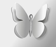 Insect butterfly Vector one outline isolated gray Stock Photography