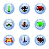 Insect buttons set Stock Photography