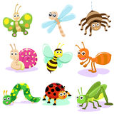 Insect cartoon. Bug insect wrom cartoon set Royalty Free Stock Image