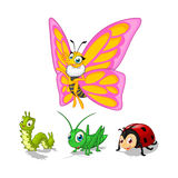 Insect Cartoon Character Vector Illustration Pack One Include Butterfly, Caterpillar, Grasshopper and Ladybug Royalty Free Stock Image