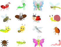 Free Insect Cartoon Collection Stock Image - 73147141