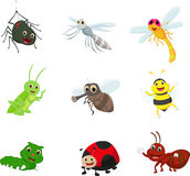 Insect cartoon collection set. Vector illustration of Insect cartoon collection set isolated on white Stock Photography