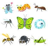 Insect Cartoon Images Collection Royalty Free Stock Photos