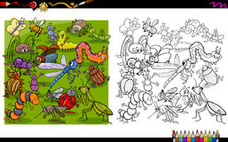 Insect characters coloring book Royalty Free Stock Photo