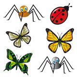 Insect collection Stock Images