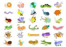 Insect. EPS8 File - no Gradients, no Effects, no mesh, no Transparencies Royalty Free Stock Photo