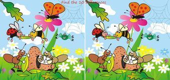 Insect - find 10 differences Stock Photos