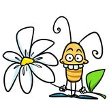 Insect flower cartoon Stock Photography