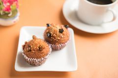 Insect food in a banana cupcake royalty free stock photos