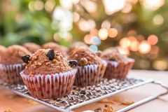 Insect food in banana cupcakes stock photo
