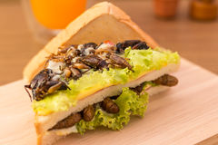 Insect food. Sandwich made of fried insect meat and mozzarella cheese, mayonnaise and tomato, lettuce with orange juice presented on a wooden board. Close-up Royalty Free Stock Photos